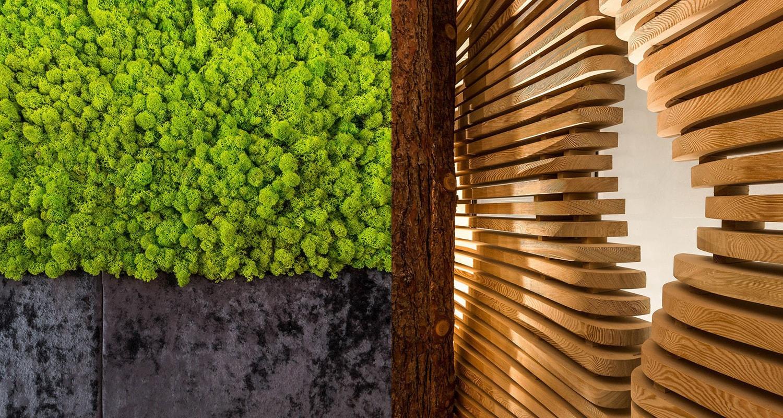 lichen et bois